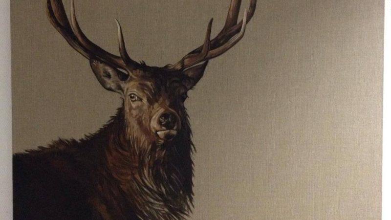 Pas à Pas Comment peindre un cerf par T.O'Conor