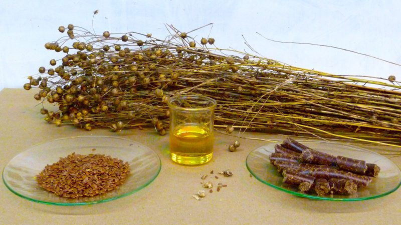 Conseils sur les Huiles et particulièrement huile de lin